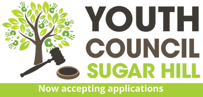 Youth Council Application