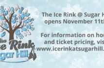 ice-rink-website-01