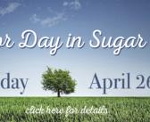 Arbor Day in Sugar Hill 2019